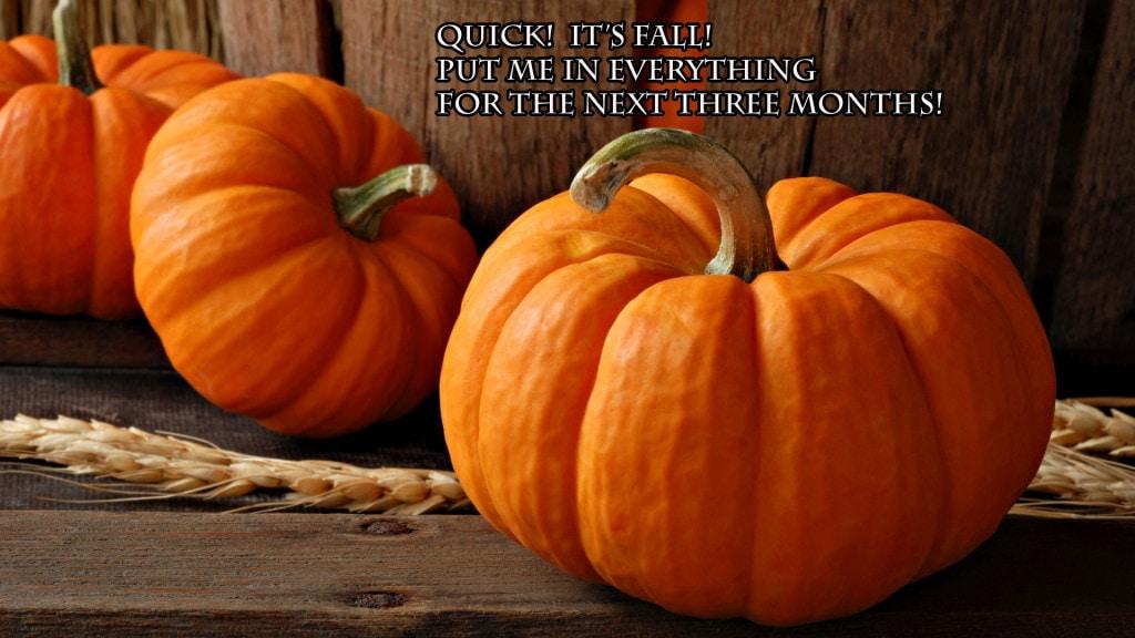 Pumpkin-Spice-Meme-Image