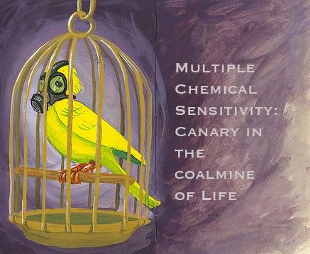 MCS-Canary